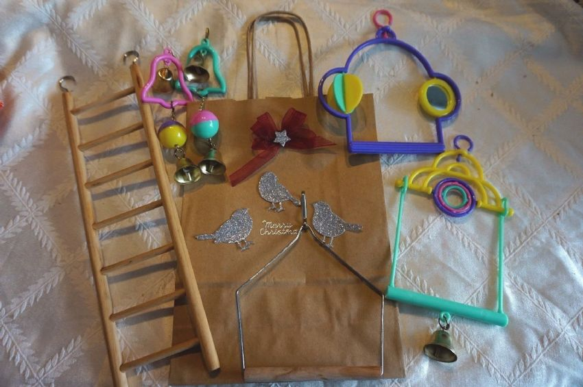 CHRISTMAS GIFT GOODY BAG FOR BUDGIES CANARIES FINCHES ETC TOYS SWINGS AND LADDER